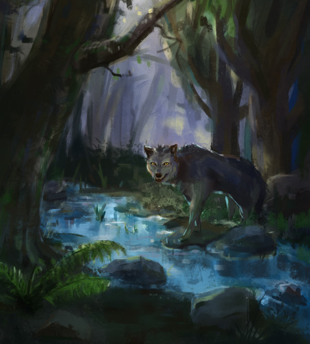 Wolf Illustration